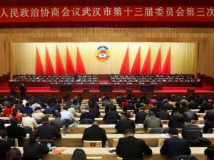政协武汉市第十三届委员会第三次会议开幕
