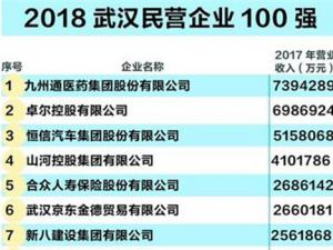2018武汉民企100强榜出炉 16家民营企业跻身营收百亿俱乐部