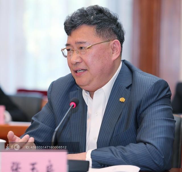 张玉良连任绿地董事长打破国企退休规定