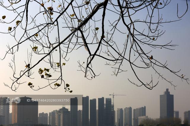 40城土地出让均价连续8个月下跌 三线城市土地成交降38%初现降温
