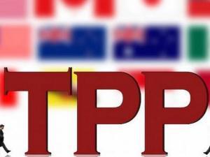 11国TPP新版图浮出水面