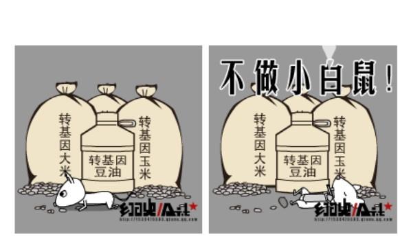 中国 转基因/美大学承认用中国儿童试验转基因大米,湖南否认。转基因到底是...