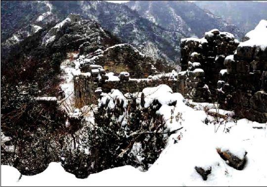 神龙架雪景    金丝猴
