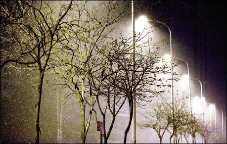 关于下雪夜晚风景图